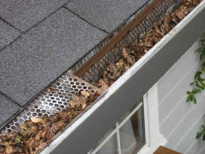 Inspect your roof whenever you clean your gutters.
