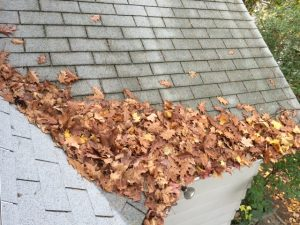 Remove leaves and debris from your roof.