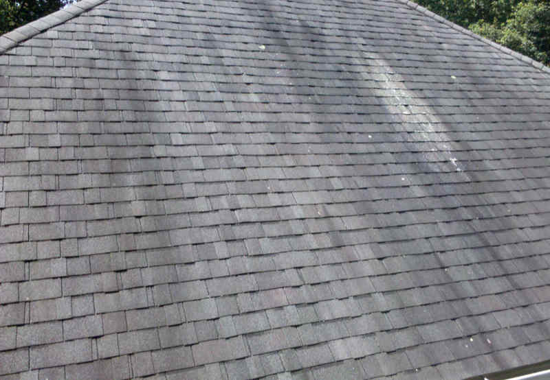 Asphalt shingles on a roof showing stains and streaking.